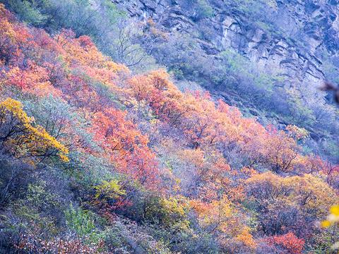 双龙峡旅游景点图片