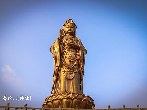 普陀山风景区旅游景点图片