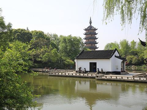 红梅公园旅游景点图片