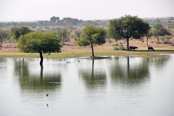 加迪萨尔湖图片