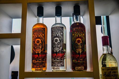 Museo Sensorial del Tequila旅游景点攻略图