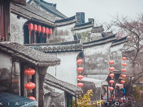 西塘风景区旅游景点图片