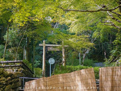 贵船神社旅游景点图片