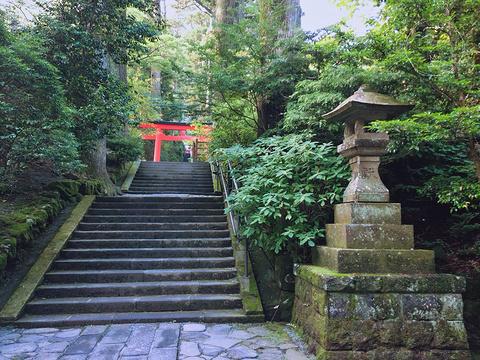 箱根神社旅游景点图片