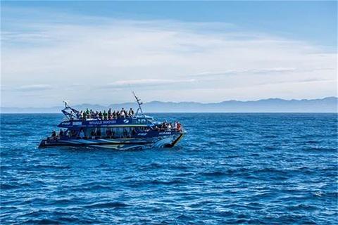 凯库拉旅游图片