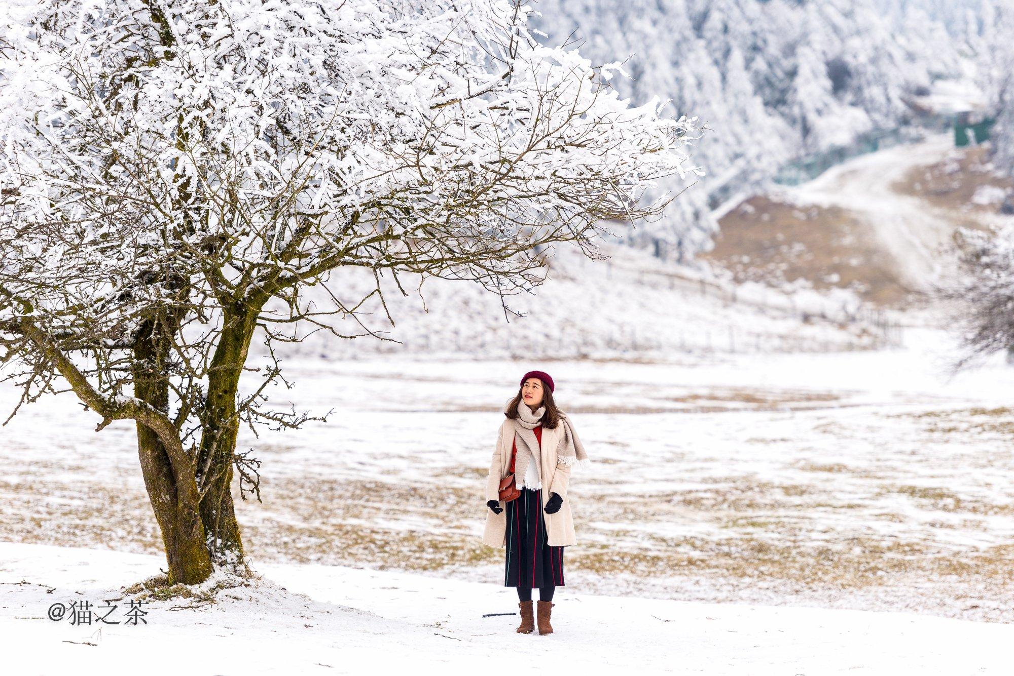 春节去哪儿玩?到重庆武隆赏雪景,过大年,嗨翻天!