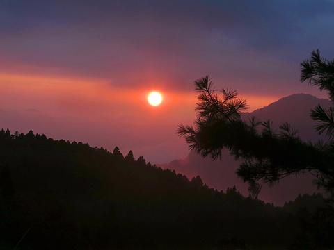 阿里山国家风景区旅游景点图片