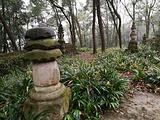 内江旅游景点攻略图片