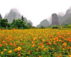 #华南自驾篇# 5条自驾线路,带你玩遍整个华南!绝美风景陪你一路畅行!