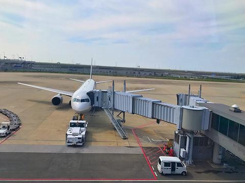关西国际机场的图片