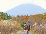 富士山旅游景点攻略图片