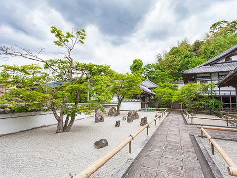 光明禅寺旅游景点图片