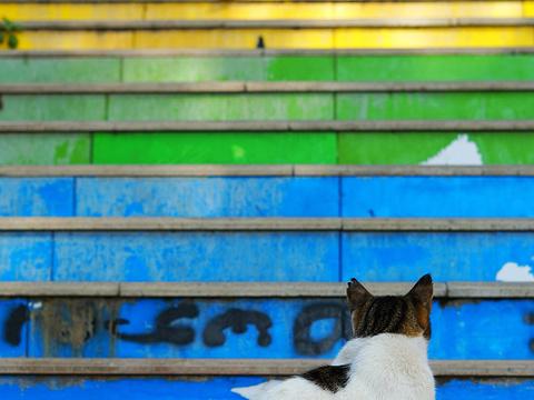 彩虹阶梯旅游景点图片