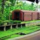 科伦坡火车站