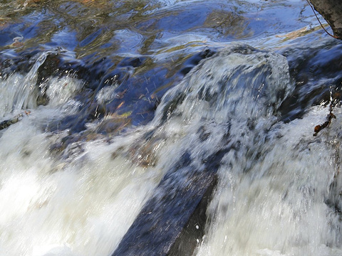 大亮子河国家森林公园旅游景点图片