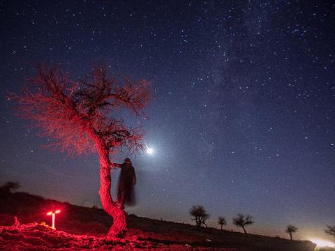 额济纳旗黑城景区旅游景点图片