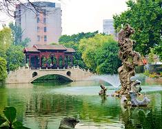 上海退休老头帮去佛山旅游