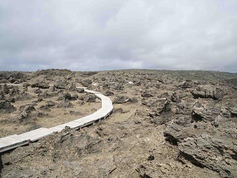 龙坑生态保护区旅游景点图片