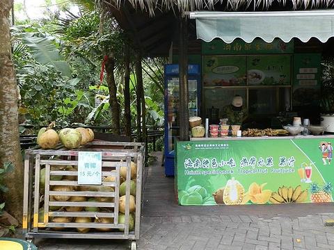 呀诺达雨林文化旅游区旅游景点攻略图