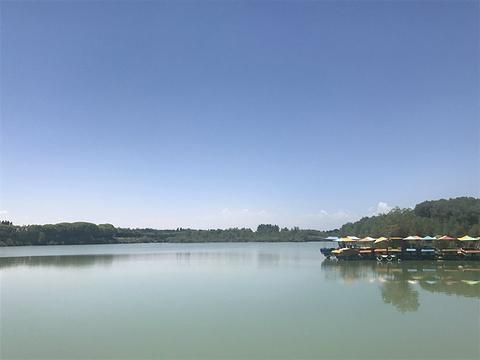 金湖杨国家森林公园旅游景点图片