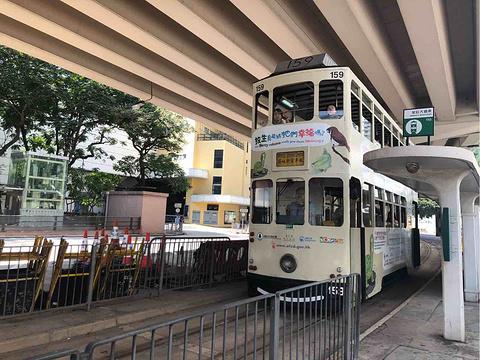 香港叮叮车旅游景点攻略图