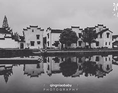 【青鸟贝贝】杭州,清明雨霏,我在人从众的江南包场了