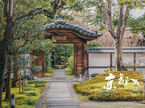 京都火车站旅游景点图片