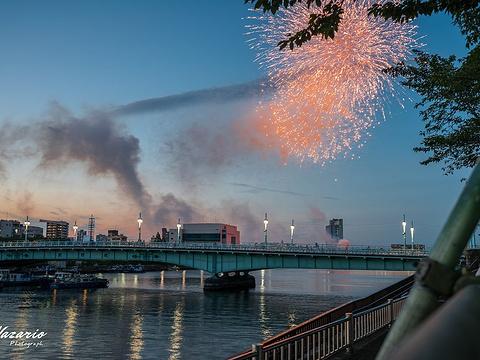 隅田川花火大会旅游景点图片