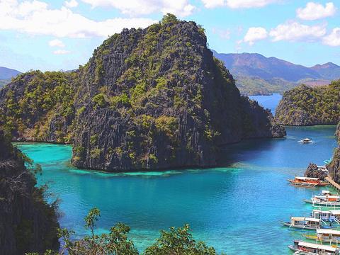 珊瑚花园旅游景点图片