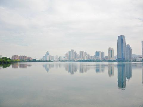 筼筜湖旅游景点图片