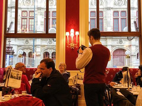 沙赫咖啡馆旅游景点图片