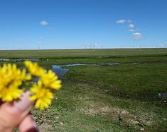 经验教训之草原天路-锡林郭勒盟太仆寺旗-霍林郭勒-阿尔山-满洲里