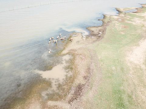 鄱阳湖国家湿地公园旅游景点攻略图