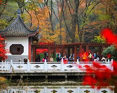 江苏漫游记|来南京的第一天,收获了一场沉淀心灵的清爽旅行!