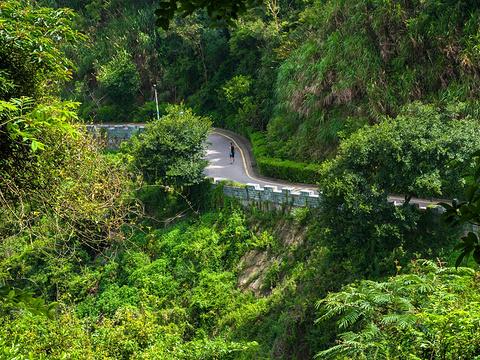 塘朗山郊野公园旅游景点图片