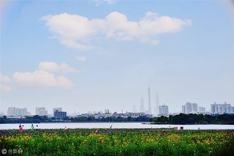 海珠湖公园