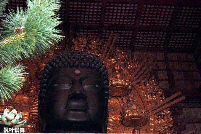 东大寺图片