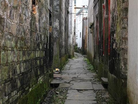 河东村旅游景点图片
