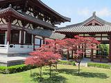 唐城遗址博物馆