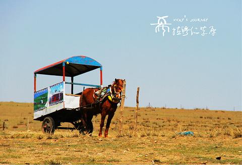 希拉穆仁草原的图片