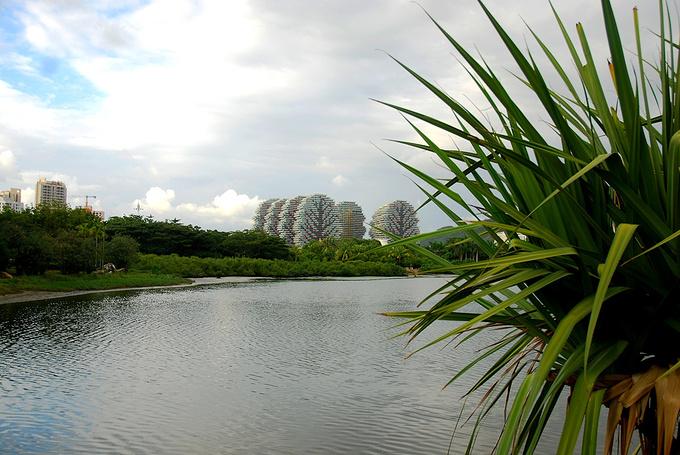 白鹭公园图片