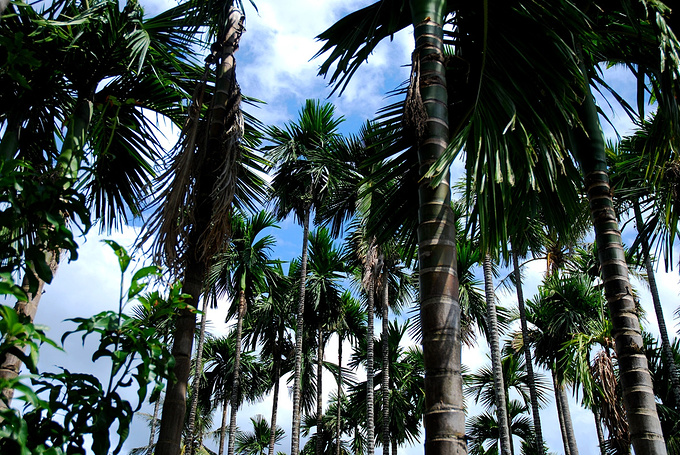 槟榔河景区图片