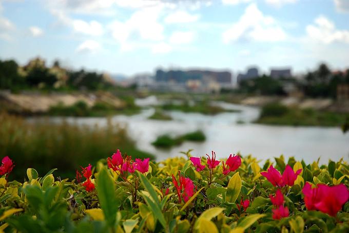 槟榔河图片