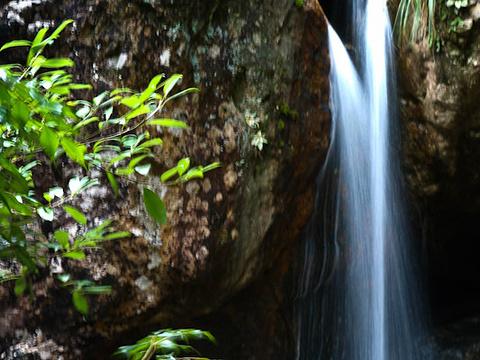 牛头山国家森林公园旅游景点图片