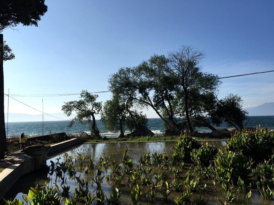 人人心中都有一个抚仙湖的影子