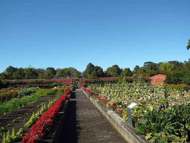 """""""汉密尔顿花园 Hamilton Gard..._汉密尔顿花园""""的评论图片"""