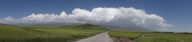 门源百里油菜花海,祁连大草原,扁都口,马蹄寺图片