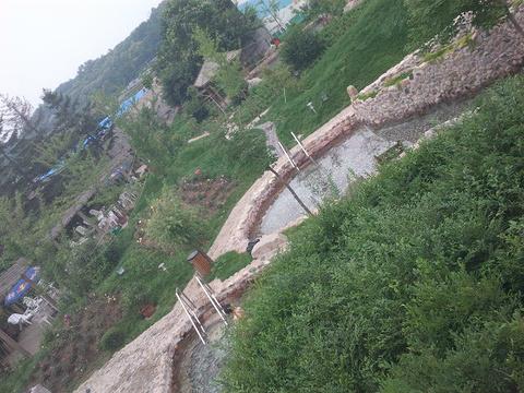 五龙背温泉旅游景点攻略图