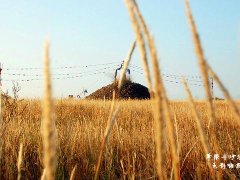 珠日河草原旅游区旅游景点图片