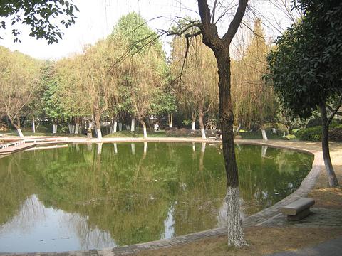 石峰公园动物园